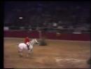 Мировой рекорд прыжки с лошади 2 32 м