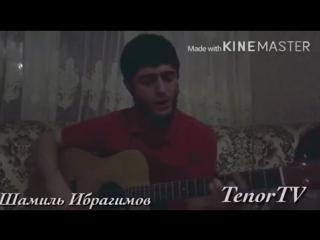 Шамиль Ибрагимов - Донна