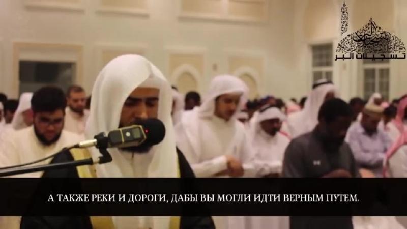Сура 16 Ан-Нахль 1-29 Сальман аль-Утайби