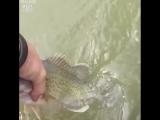 Парень поймал рыбу пальцами ног