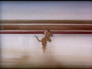 Tom and Jerry HD 07. The Bowling Alley-Cat