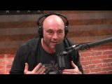 Joe Rogan - We shouldnt have an alpha chimp anymore