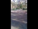 прогулка в парке продолжается!