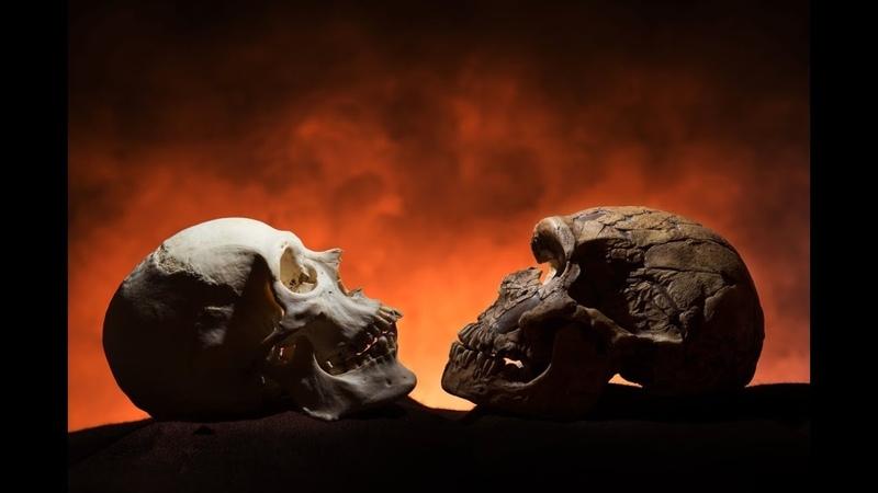 Археологи откопали инопланетянку Откуда у наших предков были инопланетные технологии