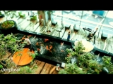 Arash feat. Helena - Dooset Daram (FIlatov and Karas Extended Mix)