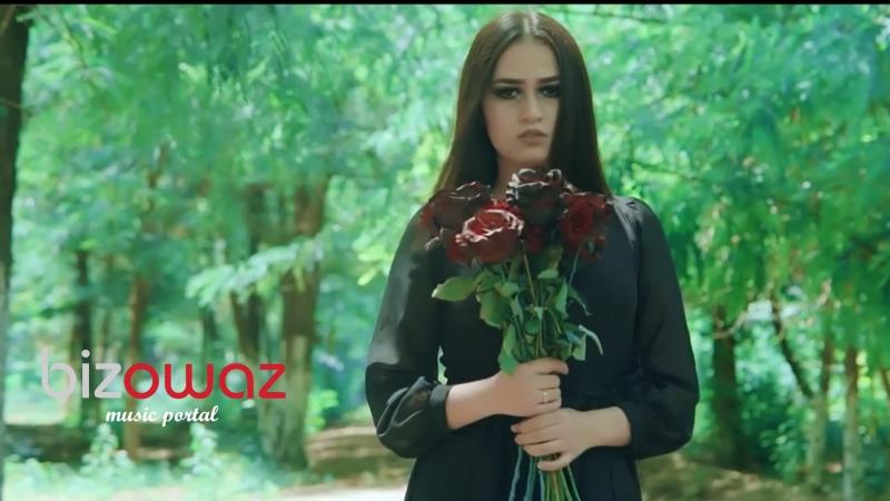 Amalia - Yanaryn (bizowaz.com)