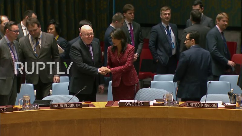 UN US, Russian UN envoys shake hands prior to UNSC meeting