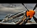 Истребитель Р 51 Мустанг