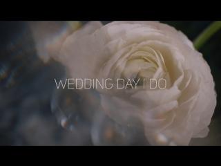 Свадебная вечеринка Wedding Day I Do