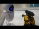 Выставка роботов!Валли и Ева.)