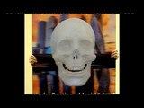 3D lenticular poster (based on)