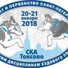 Чемпионат СПБ  20-21.01.18