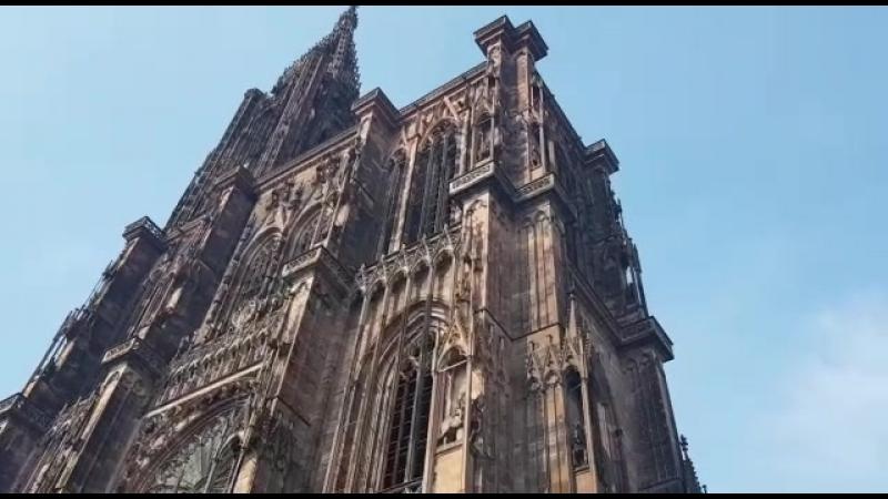 Страсбургский собор, поющий Фонтан и Летающий Мамонт
