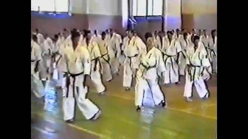 Семинар по кекусинкай каратэ - Стива Арнэйла 1 - Seminar Kyokushin Karate - http
