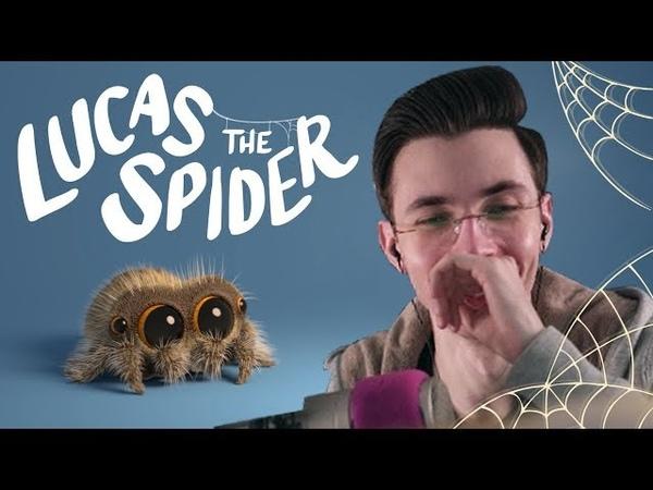 JesusAVGN Реагирует на Павука   Хесус Смотрит Lucas the Spider