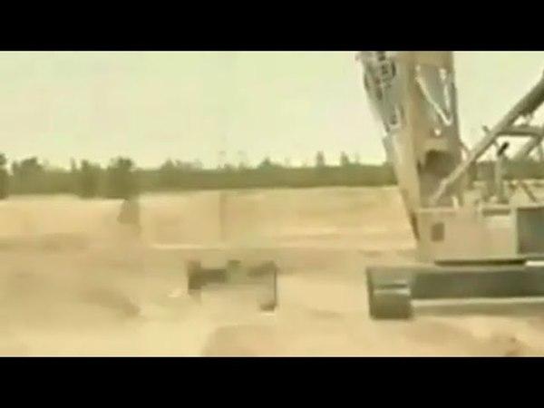 Adrenalin üçün həyatını riskə atan adam