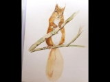 And here we go with a timelapse video of painting the cutest squirrel ever😚Really had loads of pleasure creating it😍🎨🖌Hope you