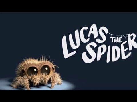Лукас - самый милый паучок Lucas the Spider (Все серии)