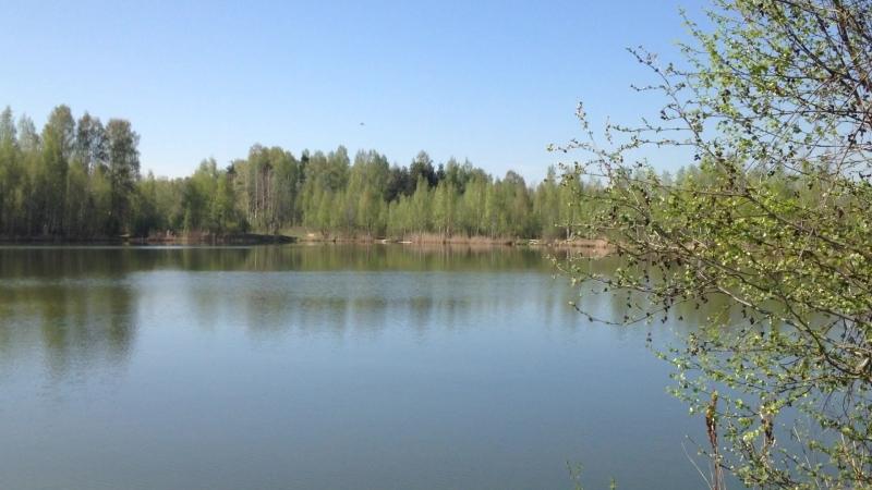 Танковые озёра. ( 7) Горелово ( СПБ)