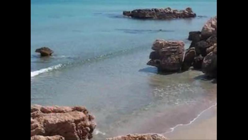 Tazenda Non potho reposare Non posso riposare La Sardegna nel cuore ♡