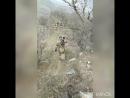 Военнослужащие 102 ОБрОН😎P.S. видео от подписчиков! Росгвардия Дагестан ВНГ армия 102бригада ПолевойВыход разведка
