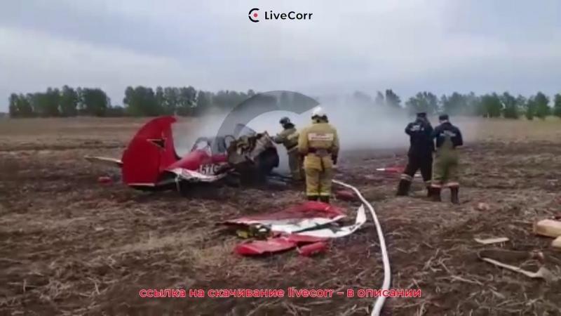 Легкомоторных самолёт Як-52 упал в Алтайском крае