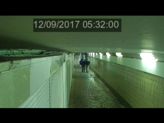 Вандалы прогулялись по пешеходному переходу в Одинцово