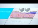 ✅ Процедура Массаж Эндосфера-терапия ⚜️ Аппарат Endospheres Италия 🎯 Цель избавиться от целлюлита, улучшить тургор и рельеф
