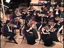 Bach : Jesu, Joy of Man's Desiring ~ Version orchestra