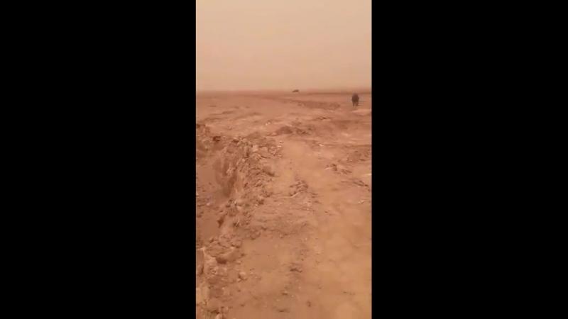 Война в Сирии. Боевики СДС обстреливают обездвиженный шахид-мобиль ИГ