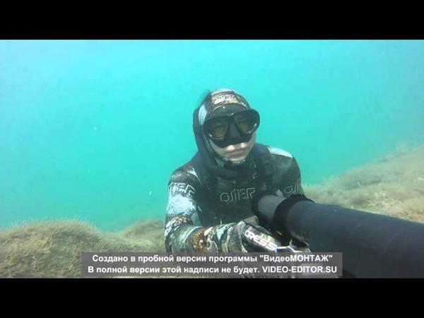 Подводная охота в Чёрном море (август 2015)