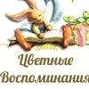 ДЕКОР ПРАЗДНИКОВ, CANDY BAR Цветные Воспоминания