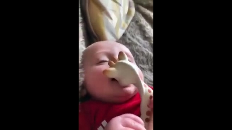 Dog wants his Giraffe toy back that baby is sucking on