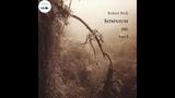 ambient dark ambien new age Robert Rich - Somnium (2001), part 2