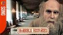 Horrible Histories Songs Charles Darwin 'Natural Selection' CBBC