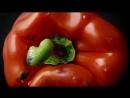 Adventures In Imagination- M&S Food - TV Ad 2014