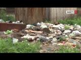 После мощных ливней Чита тонет уже не в воде, а в мусоре