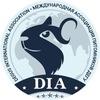Мир дегу - официальная группа
