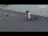 Как быстро сесть на шпагат
