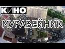 Муравейник Кино Виктор Цой кавер-версия. Доброго утра,Краснодар