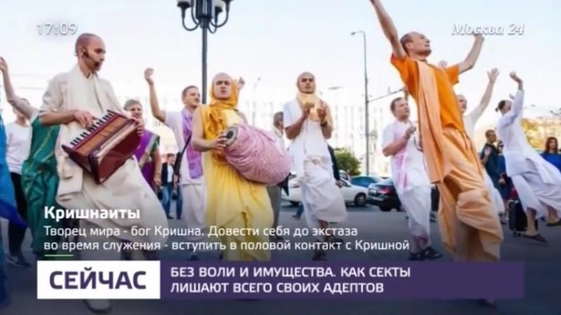 Как отличить секту от безобидного занятия - Москва 24