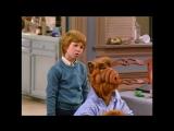 Alf Quote Season 1 Episode_3_Это не Лаки