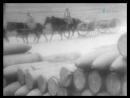 Гении и злодеи (Проект Льва Николаева)-Габер Фриц (2003)