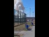 Дым академ