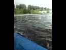 Волга 7