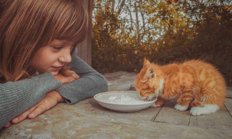 13 ноября – всемирный день доброты