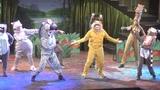 Meet The Cast of Madagascar A Musical Adventure