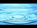 Мнение эксперта по очистке воды системой Amway