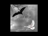 Владимир Лунёв - Чёрный ворон, белая птица