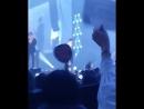 Родители Сеха на концерте